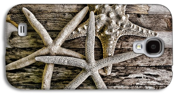 Original Photographs Galaxy S4 Cases - Sea Stars Galaxy S4 Case by Colleen Kammerer