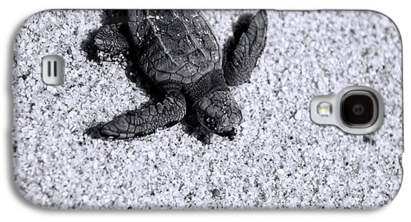 Sea Turtle In Black And White Galaxy S4 Case by Sebastian Musial
