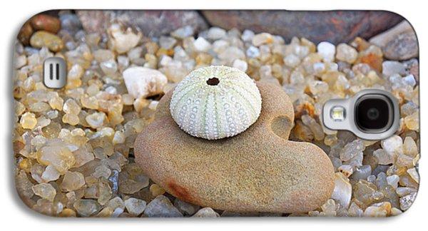 Agate Beach Oregon Galaxy S4 Cases - Sea Urchin Art prints Coastal Beach Agates Galaxy S4 Case by Baslee Troutman