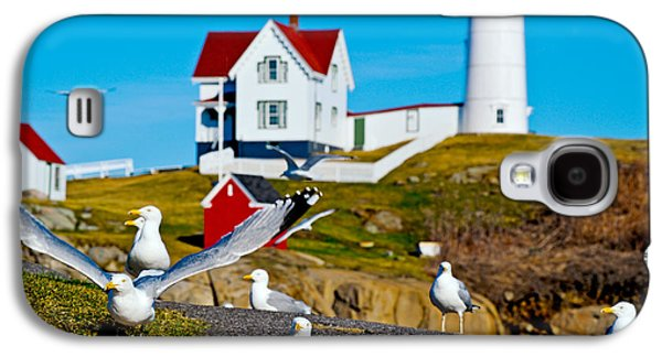 Nubble Lighthouse Galaxy S4 Cases - Seagulls At Nubble Lighthouse, Cape Galaxy S4 Case by Panoramic Images