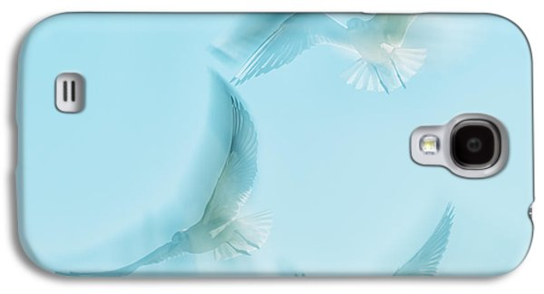 Seabirds Galaxy S4 Cases - Seagulls  Galaxy S4 Case by Stylianos Kleanthous