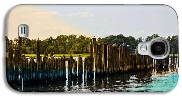 Original Photographs Galaxy S4 Cases - Seagulls Watch Galaxy S4 Case by Colleen Kammerer