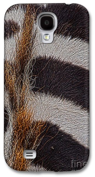 Deceptive Galaxy S4 Cases - Seamless Galaxy S4 Case by Alan Look
