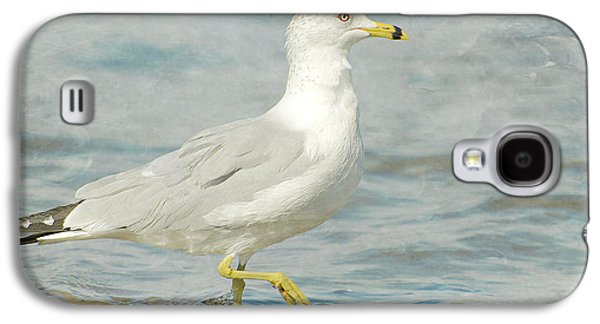 Galaxy S4 Cases - Seaside Dip Galaxy S4 Case by Fraida Gutovich