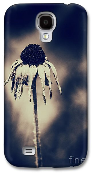 Abstracted Coneflowers Galaxy S4 Cases - Seasons End Galaxy S4 Case by Tim Gainey