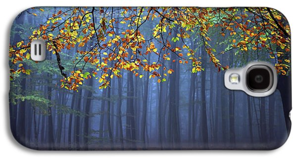 Autumn Trees Galaxy S4 Cases - Seconds Before The Light Went Out Galaxy S4 Case by Roeselien Raimond