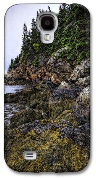 Maine Mountains Galaxy S4 Cases - Secret Hideaway Galaxy S4 Case by Joan Carroll