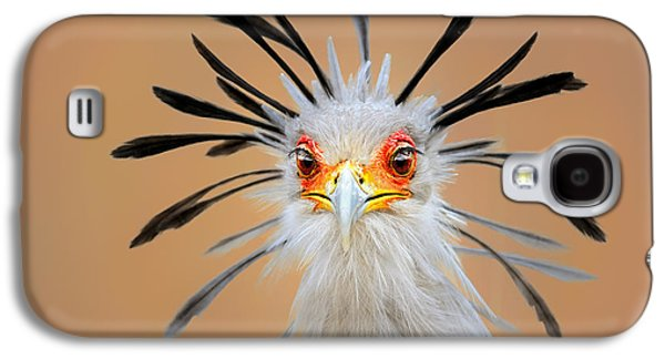 Display Galaxy S4 Cases - Secretary bird portrait close-up head shot Galaxy S4 Case by Johan Swanepoel