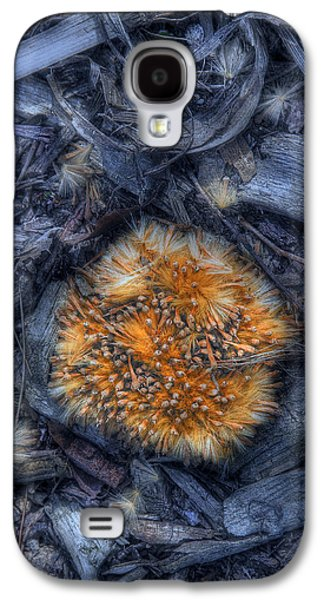 Seed Galaxy S4 Cases - Seed Pod Galaxy S4 Case by Tom Mc Nemar