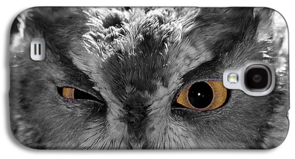 Photos Of Birds Galaxy S4 Cases - Selective Flirting Galaxy S4 Case by Skip Willits