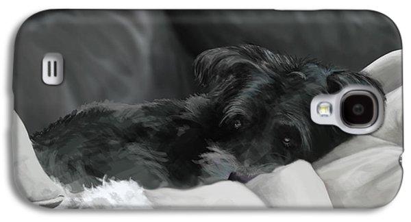 Dog Framed Prints Digital Art Galaxy S4 Cases - Shadow the Schnauzer Galaxy S4 Case by Matt Upholz