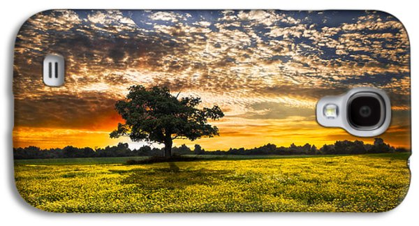 Pasture Scenes Galaxy S4 Cases - Shadows At Sunset Galaxy S4 Case by Debra and Dave Vanderlaan