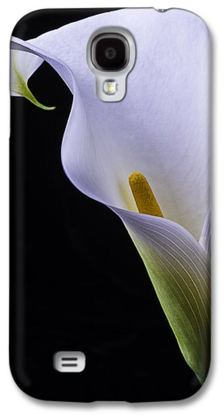 Graphic Photographs Galaxy S4 Cases - Shapely Calla lily Galaxy S4 Case by Garry Gay