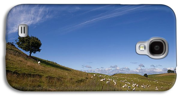 Farmscape Galaxy S4 Cases - Sheep And Tree, Carbane West Galaxy S4 Case by Panoramic Images
