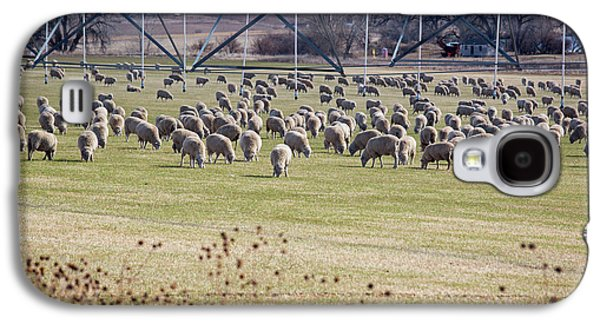 Sheep Grazing Under An Irrigation Boom Galaxy S4 Case by Jim West