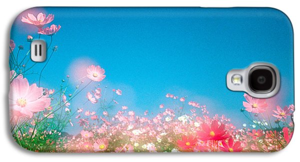 Close Focus Nature Scene Galaxy S4 Cases - Shiny Pink Flowers In Bloom With Blue Galaxy S4 Case by Panoramic Images