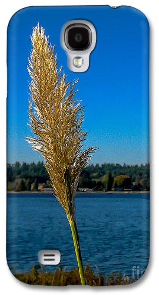 Haybale Galaxy S4 Cases - Shoreline Grass Galaxy S4 Case by Robert Bales