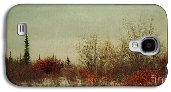 Moody Photographs Galaxy S4 Cases - Signs Of Winter Galaxy S4 Case by Priska Wettstein