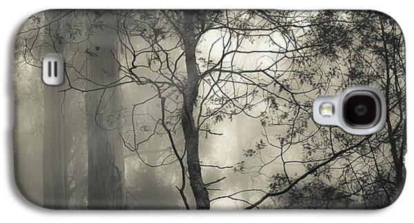 Fog Photographs Galaxy S4 Cases - Silent Stirring Galaxy S4 Case by Amy Weiss