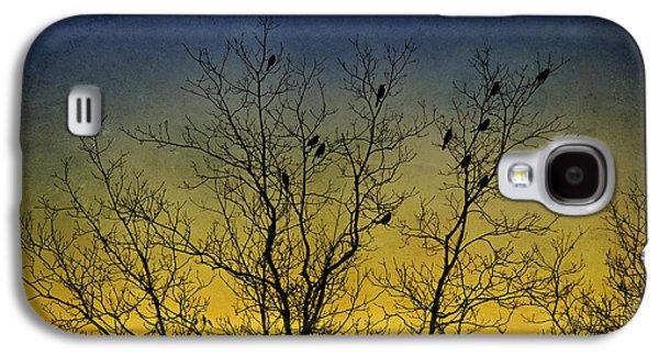 Rollosphotos Digital Art Galaxy S4 Cases - Silhouette Birds Sequel Galaxy S4 Case by Christina Rollo