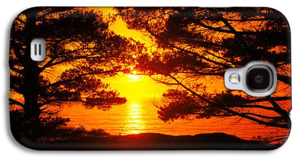 Big Sur California Galaxy S4 Cases - Silhouette Of Trees On The Coast, Big Galaxy S4 Case by Panoramic Images