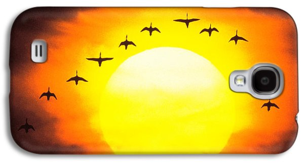 Flying Animal Galaxy S4 Cases - Silhouetted Birds In Sunset Galaxy S4 Case by Panoramic Images