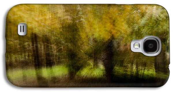 Poster Art Galaxy S4 Cases - Silvan glade Galaxy S4 Case by Jb Atelier