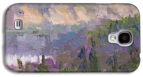 Recently Sold -  - Abstract Forms Galaxy S4 Cases - Silver and Gold - Matanuska canyon cliffs river fireweed Galaxy S4 Case by Talya Johnson