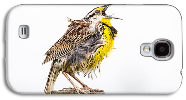 Singing Meadowlark 3rd Of 3 Galaxy S4 Case by Bill Swindaman