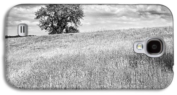 Field Digital Art Galaxy S4 Cases - Single Apple Tree In Maine Hay Field Photograph Galaxy S4 Case by Keith Webber Jr