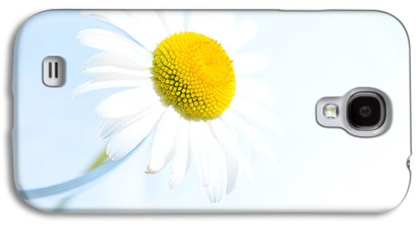 Blueish Galaxy S4 Cases - Single Daisy Flower in Vase Galaxy S4 Case by Sabine Jacobs