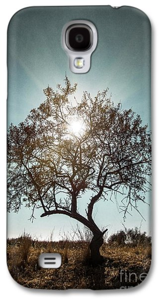 Light Photographs Galaxy S4 Cases - Single Tree Galaxy S4 Case by Carlos Caetano