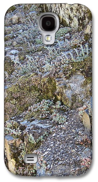Ancient Tapestries - Textiles Galaxy S4 Cases - Siskiyou Sedums Galaxy S4 Case by Dan A  Barker