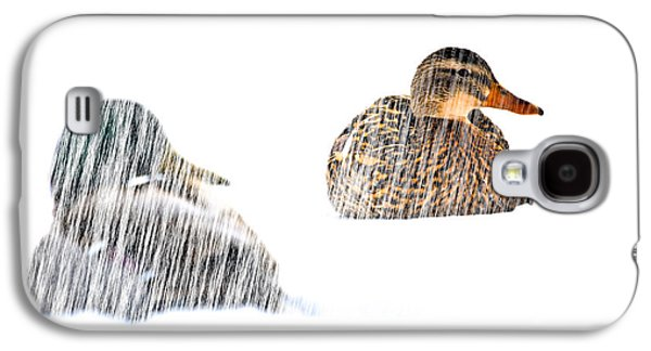 Bob Orsillo Photographs Galaxy S4 Cases - Sitting Ducks in a blizzard Galaxy S4 Case by Bob Orsillo