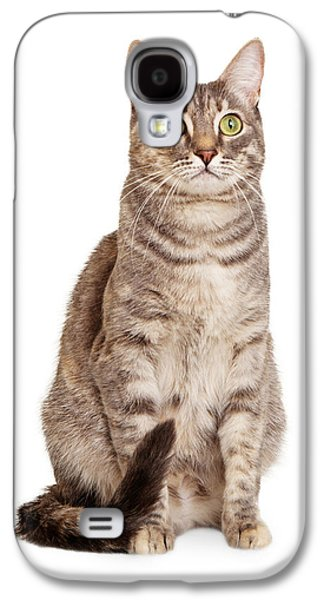 Gray Tabby Galaxy S4 Cases - Sitting gray tabby cat Galaxy S4 Case by Susan  Schmitz