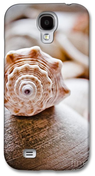 Original Art Photographs Galaxy S4 Cases - Sitting Pretty Galaxy S4 Case by Colleen Kammerer