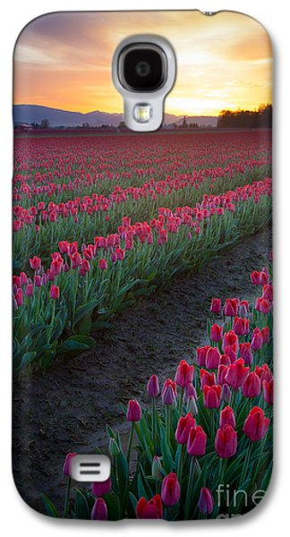 Agronomy Galaxy S4 Cases - Skagit Valley Blazing Sunrise Galaxy S4 Case by Inge Johnsson