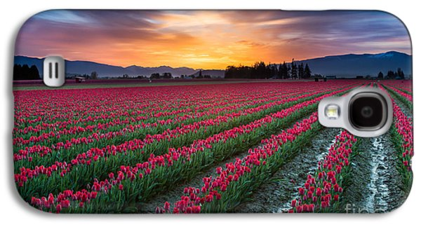 Agronomy Galaxy S4 Cases - Skagit Valley Predawn Galaxy S4 Case by Inge Johnsson
