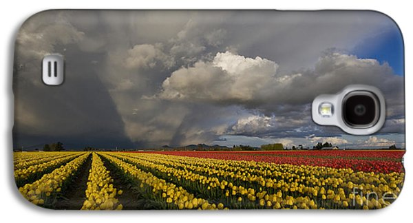 Field. Cloud Galaxy S4 Cases - Skagit Valley Storm Galaxy S4 Case by Mike Reid