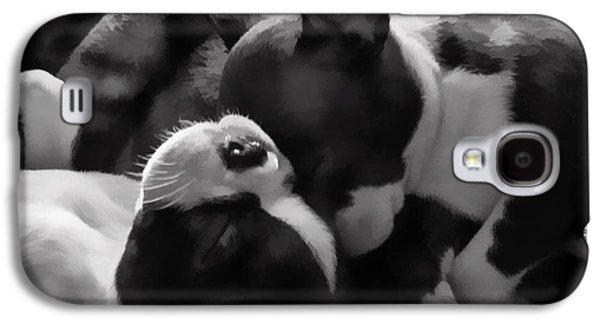 Canine Greeting Cards Digital Galaxy S4 Cases - Sleeping Beauties - Boston Terriers Galaxy S4 Case by Jordan Blackstone