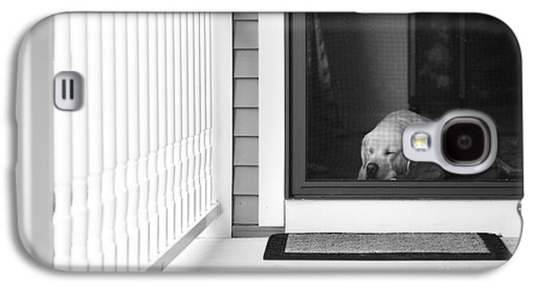 Screen Doors Galaxy S4 Cases - Sleeping dog Galaxy S4 Case by Diane Diederich
