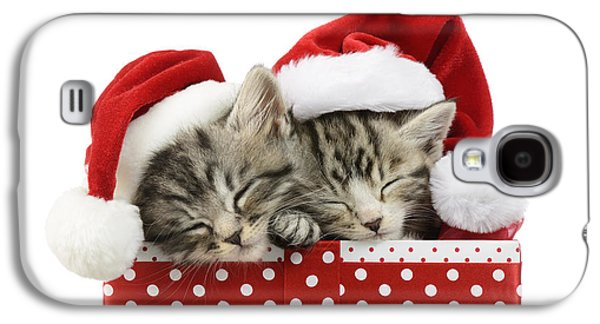 Christmas Eve Galaxy S4 Cases - Sleeping Kittens In Presents Galaxy S4 Case by Greg Cuddiford