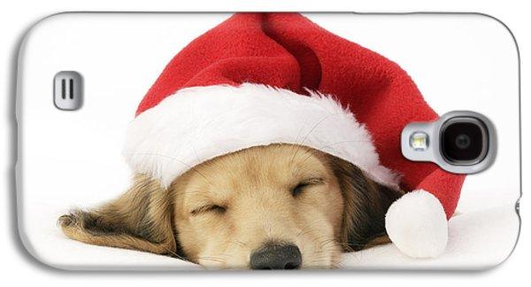 Rudolph Galaxy S4 Cases - Sleeping Santa Puppy Galaxy S4 Case by Greg Cuddiford