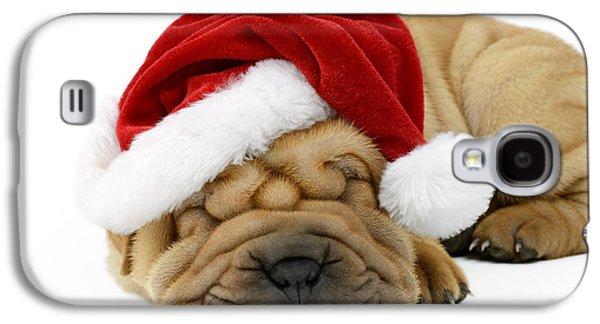 Rudolph Galaxy S4 Cases - Sleeping Xmas Pup Galaxy S4 Case by Greg Cuddiford