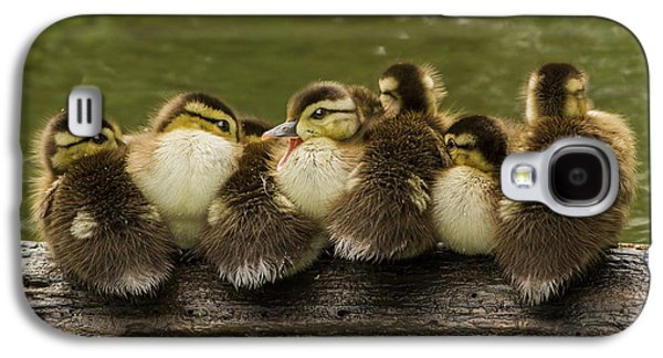 Baby Bird Galaxy S4 Cases - Sleepy Babies Galaxy S4 Case by Mircea Costina Photography