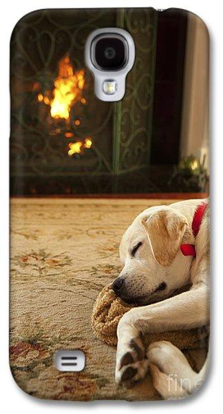 Puppies Galaxy S4 Cases - Sleepy Puppy Galaxy S4 Case by Diane Diederich