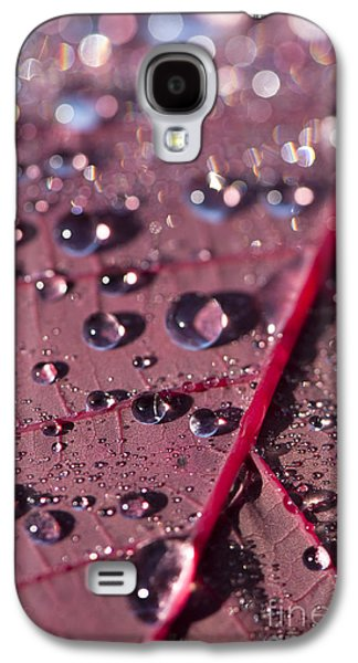Colorful Abstract Galaxy S4 Cases - Smoke Bush Droplets Galaxy S4 Case by Anne Gilbert