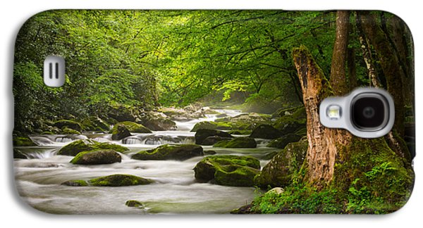 Smoky Mountains Solitude - Great Smoky Mountains National Park Galaxy S4 Case by Dave Allen