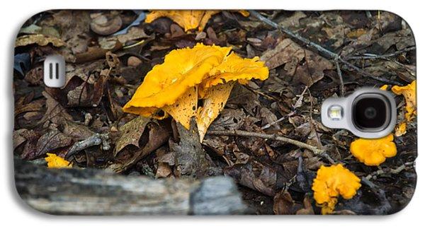 Mushroom Digital Art Galaxy S4 Cases - Smooth Chanterelle Galaxy S4 Case by Chris Flees