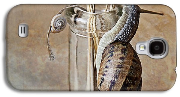 Studio Photographs Galaxy S4 Cases - Snails Galaxy S4 Case by Nailia Schwarz